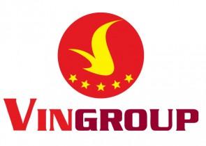 LogoVinGroup