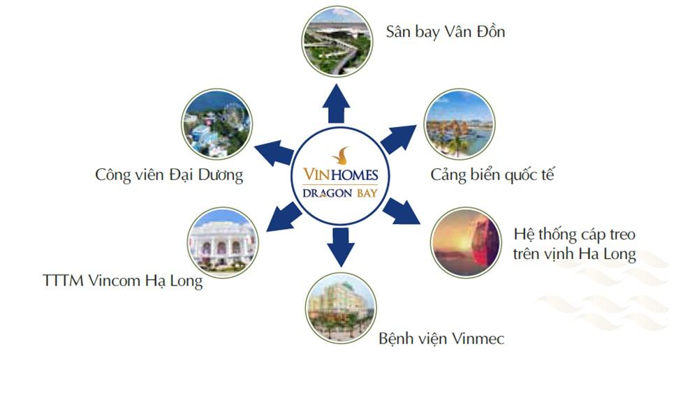 lien-ket-vung-du-an